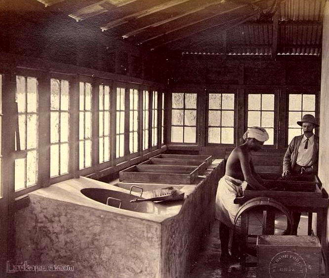 A Tea factory_ late 1800_s.jpg
