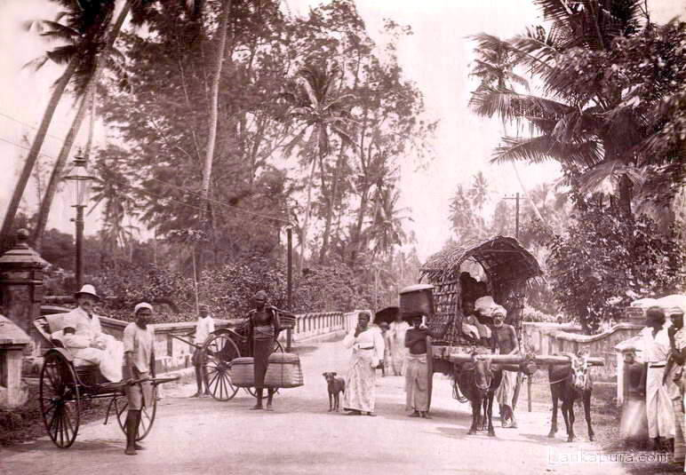 CEYLON BUSY ROAD VIEW BY PLATE