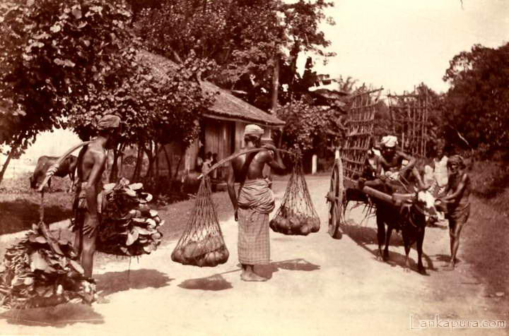CEYLON Superb Native Street Scene 1870.jpg