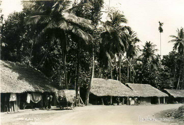 Ceylon Sri Lanka native huts antique ethnic photo1930.jpg