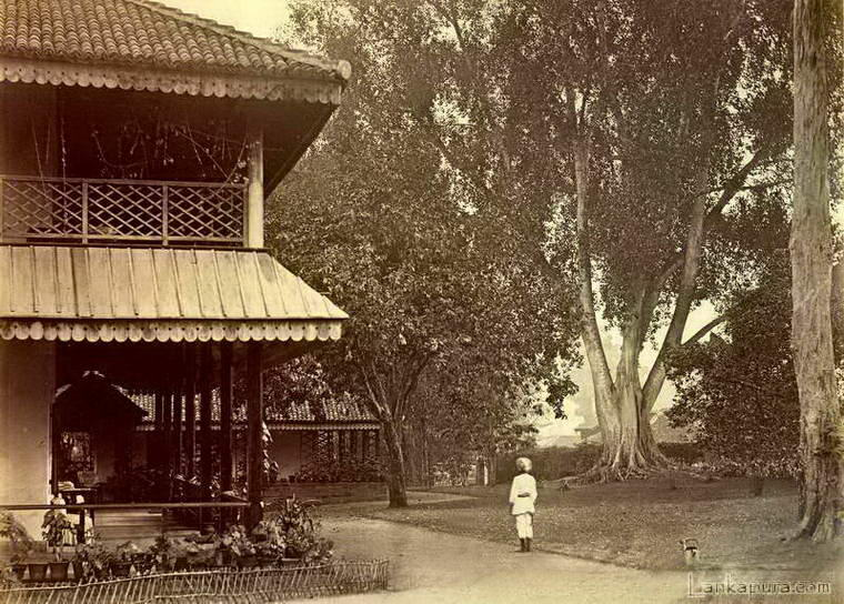 Tea estate bangalow badulla ceylon late 1800