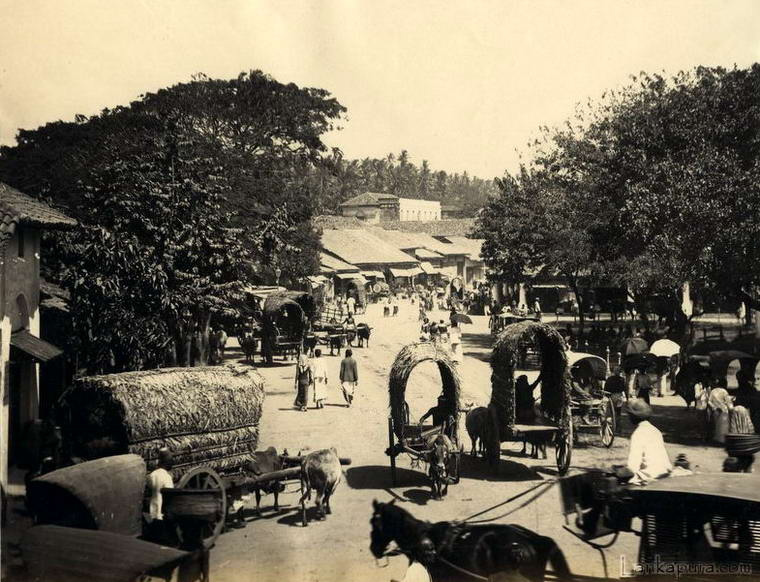 c_-1880_colombo_street_scene.jpg