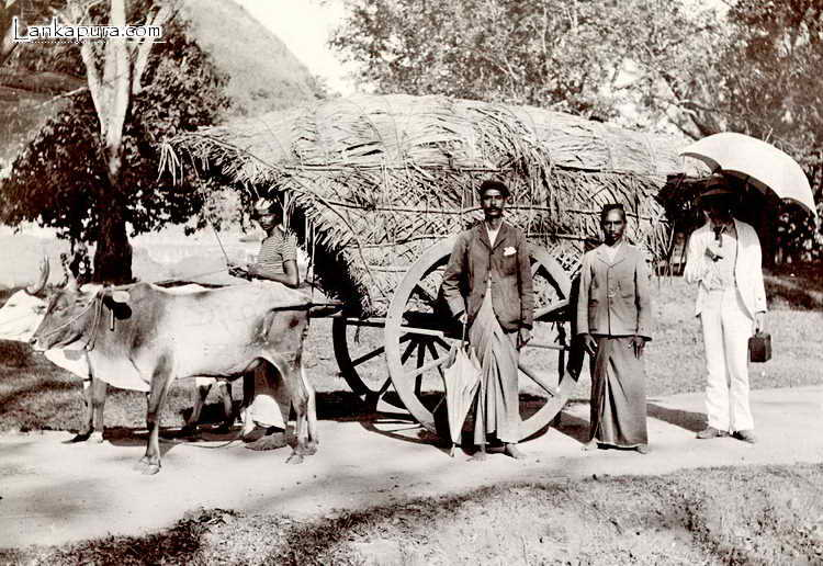 native_road_scene_ceylon.jpg