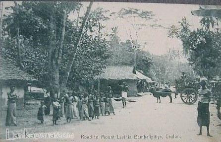road-to-mount-lavinia_-bamballapitiya_-ceylon.jpg