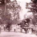 Ceylon Busy Road View