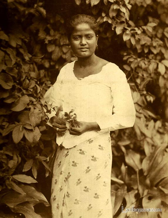 Native Sinhalese Girl 1870