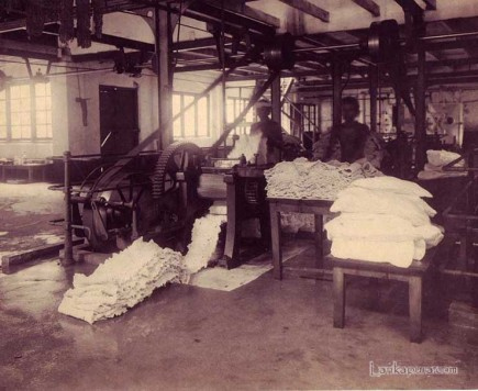 rubber processing plant ceylon