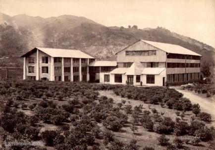 A Ceylon Tea Factory Early 1900s