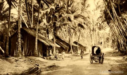 Galle Road Ceylon by Skeen