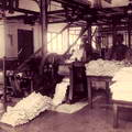 Rubber Processing in Ceylon