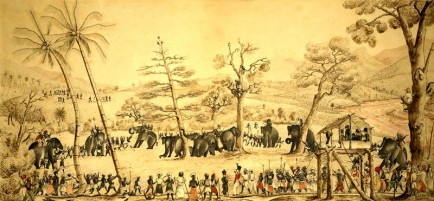 Capturing elephants in Ceylon