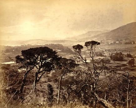 Nuwara Eliya, The Hills in Ceylon