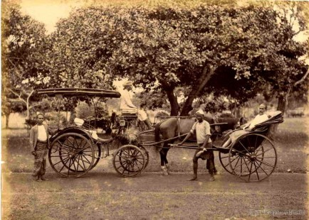 Horse carriage and a rickshaw, Ceylon