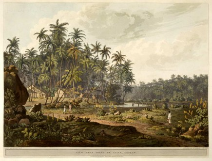 View near Point de Galle, Ceylon