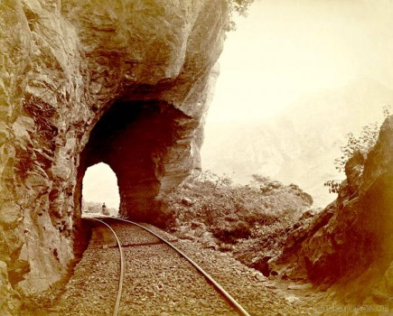 View on the Railway Columbo to Kandy, Ceylon