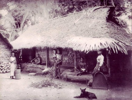 Natives and Their Hut Ceylon