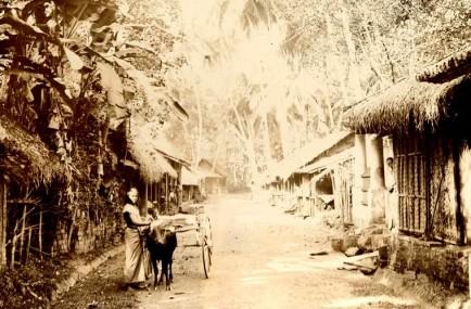 A street scene in Colombo, Ceylon 1878 - 1882