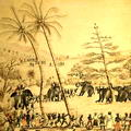 Capturing elephants in Ceylon. c.1825