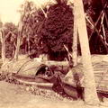 Natives boats on Dutch canal, near Colombo Ceylon 1890