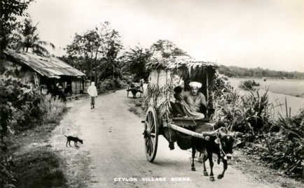 Village Scene in early 1900s, Sri Lanka