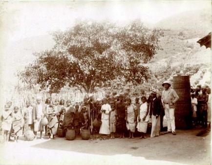 Tea Estate workers 1870s