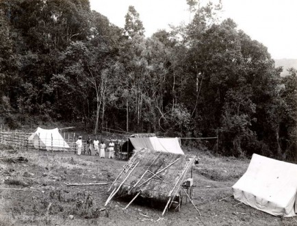 A camp site in the Sinharaja Forest, Ceylon