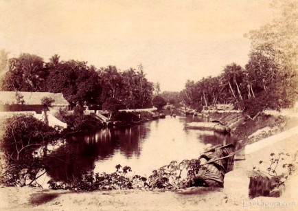 View of a Canal Colombo Ceylon 1890