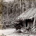 A typical native house in the nearby Sinharaja Forest, Ceylon