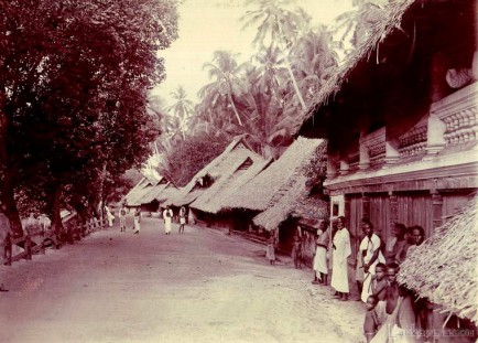 A stretch of native houses near Colombo Late 1800s