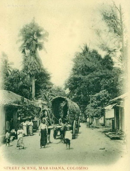 Street Scene at Maradana, Colombo, Ceylon in 1906