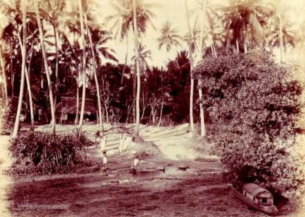Typical village scene near Colombo