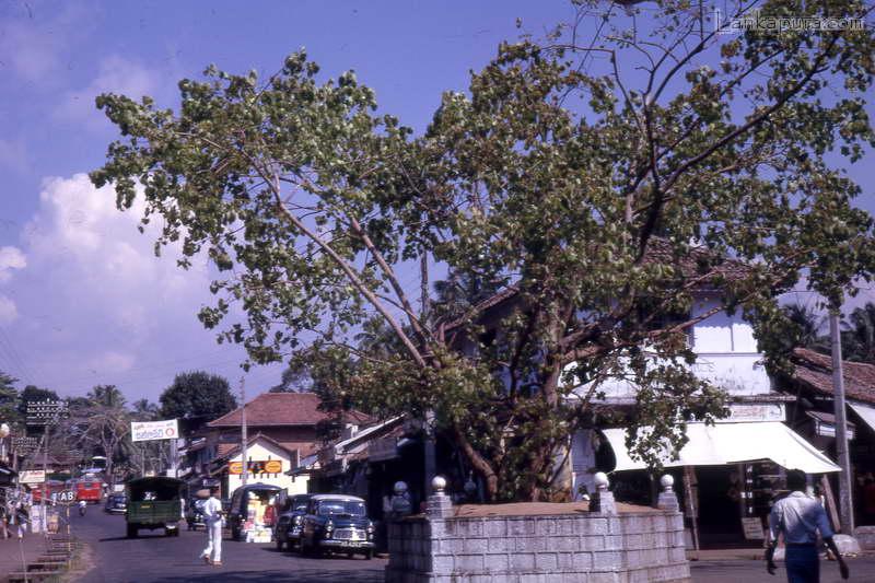 Panadura Sri Lanka  city pictures gallery : Panadura to Ratnapura Road, Sri Lanka 1962 #IMG545