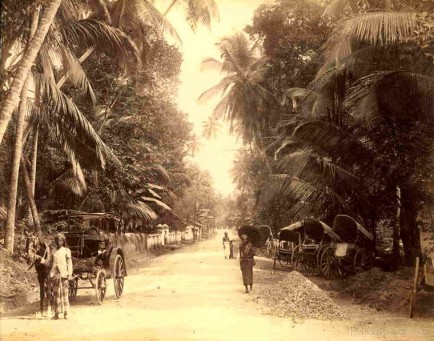 Road scene near Colombo, Ceylon c.1880