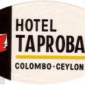 Hotel Taprobane luggage label, Sri Lanka