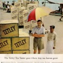 Tetley Tea Advertising