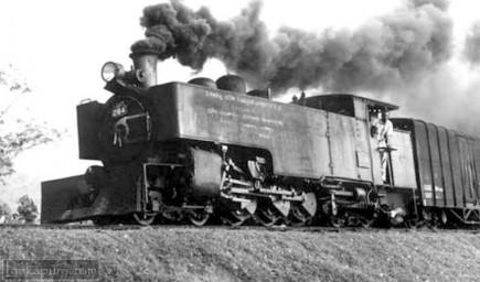 Narrow gauge train on the Keleni Valley Line at Kuruwita