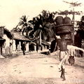 Road scene near Colombo, late 1800's