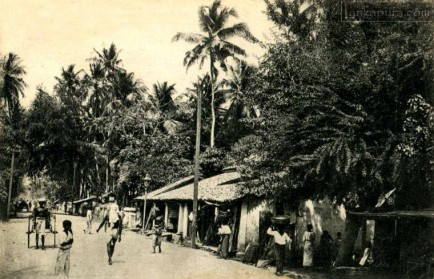 Colpetty Road, Mount Lavinia, Colombo, Sri Lanka 1919
