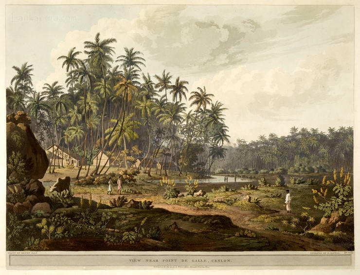 View Near Point De Galle Ceylon